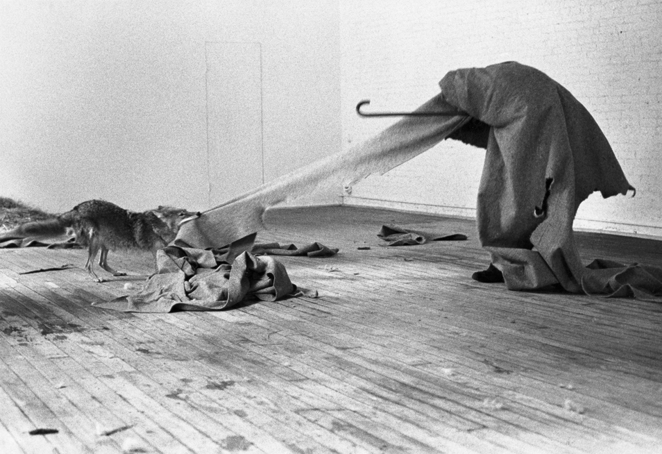 Joseph Beuys: Coyote