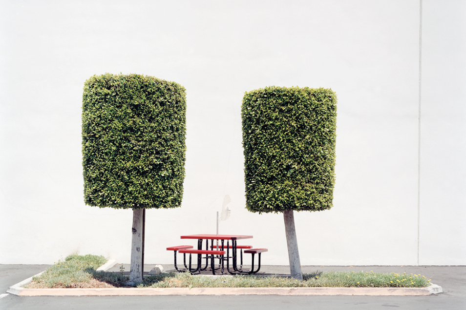 Topiaries with Lunch Table