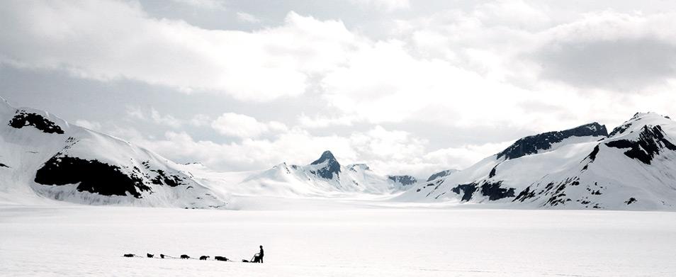 Dog Sled Camp Atop a Glacier