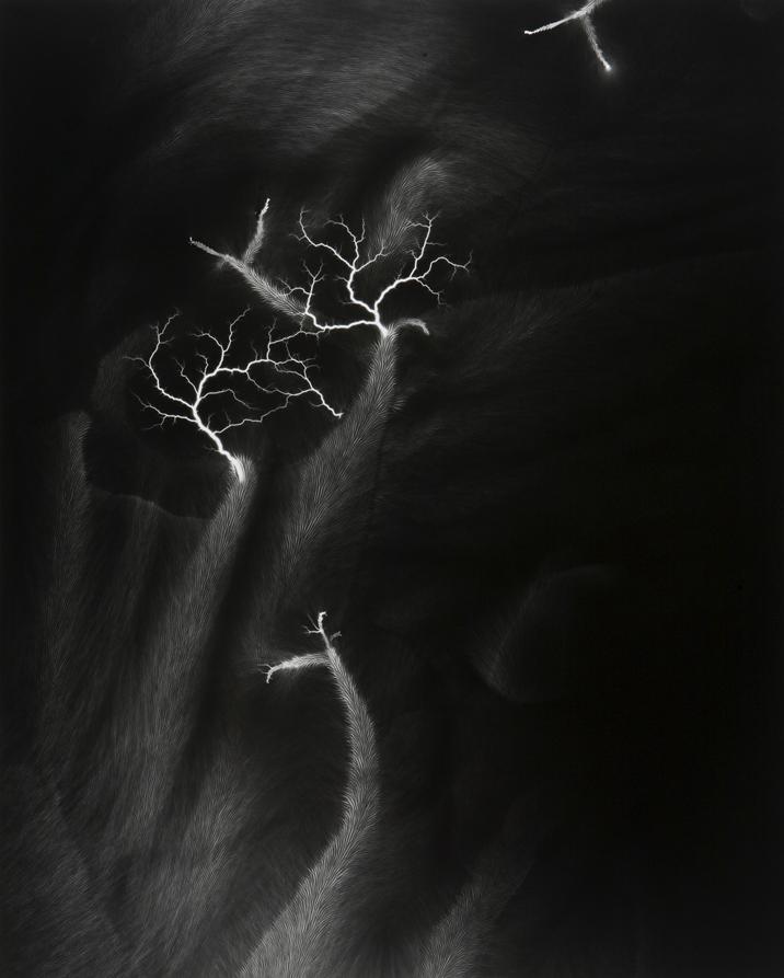 Hiroshi Sugimoto's Lightning Fields