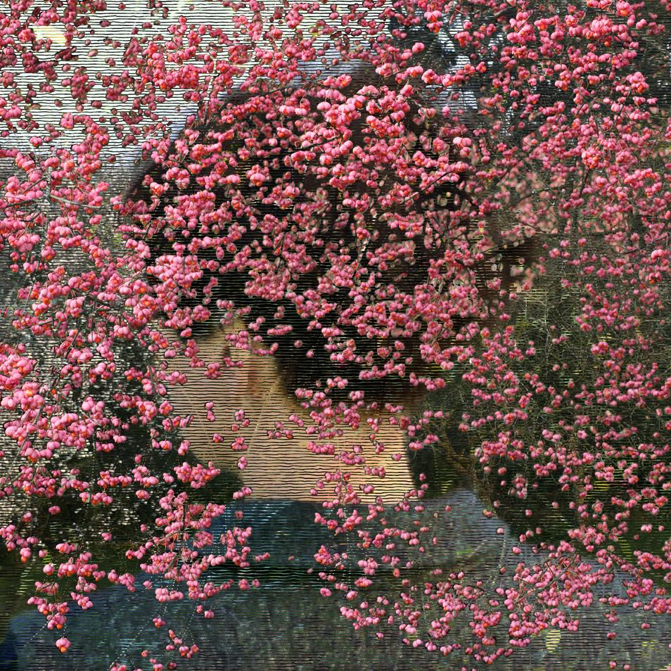 Helen Sear: Beyond The View