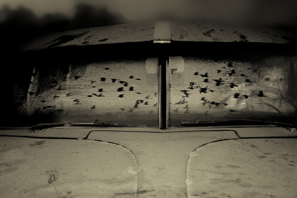 Angela Bacon-Kidwell: Traveling Dream (5 Photos)