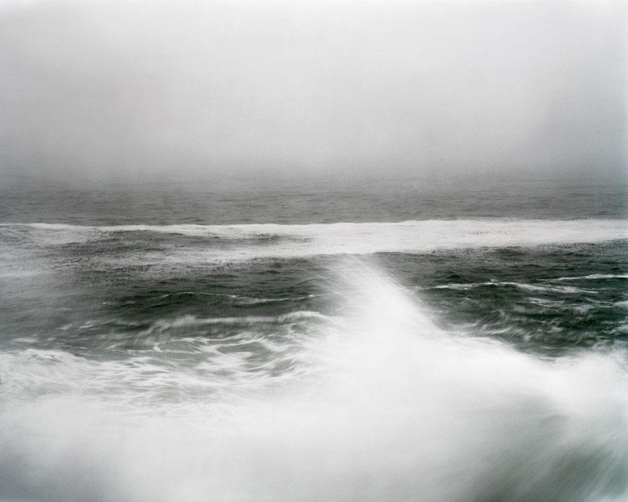 Lisa M. Robinson: Oceana