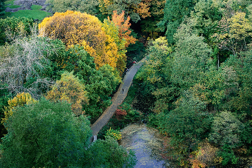 Private Views of Central Park (8 Photos)