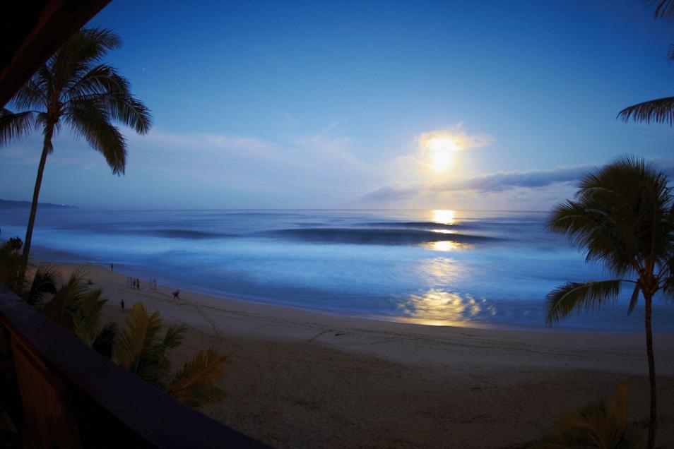 photo de surf 8710