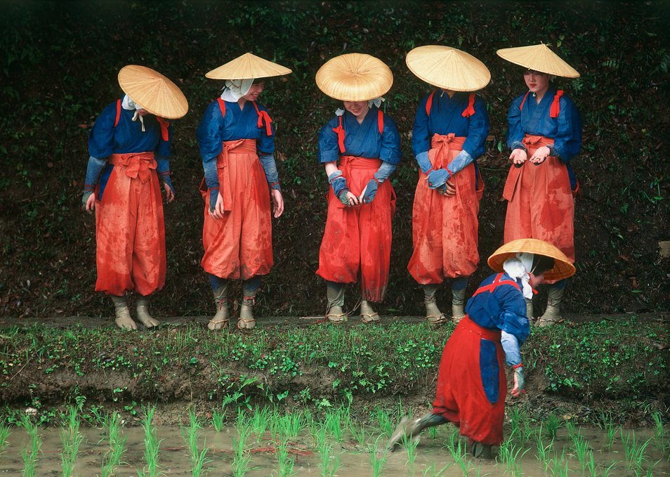 8. Rice_Planting_Festival__Kyoto__1984