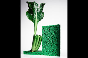Sponge and vegetable. © Akira Kawahata