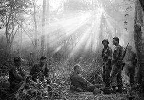 Sunlight breaks through dense foliage around the town of Binh Gia, January 1965. © Horst Faas/AP Photo