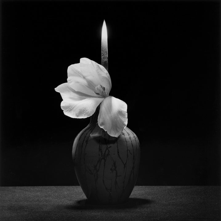 """PDN Photo of the Day 