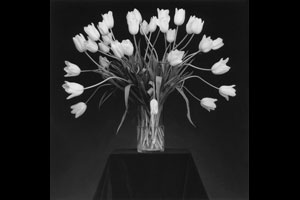 © Courtesy Robert Mapplethorpe Foundation