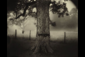 © Sally Mann/Courtesy Hachette Book Group