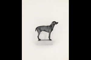 © William Wegman/Courtesy The J. Paul Getty Museum, Los Angeles