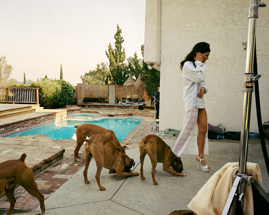 Boxers, Mission Hills, from the series The Valley, 1999