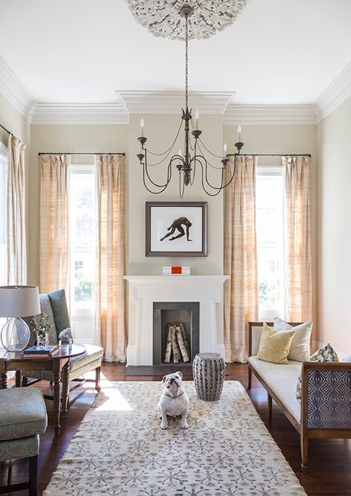 The Dogs of Interior Design PDN Photo of the Day